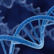 CSA e 2Bpharma un nucleotide per acufene