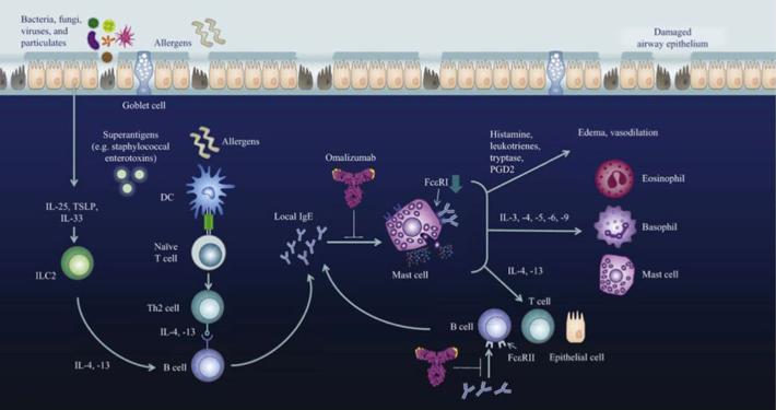 Azione del farmaco biologico